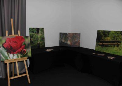 Ausstellung_2017_0045